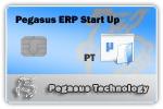 ERP Start Up