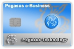 Pegasus Web App e-Business